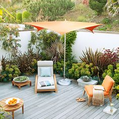 drought tolerant patio