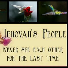 Jehovah's promise <3
