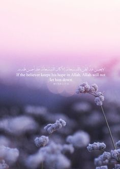 """Islam has put great importance on the virtue of keeping hope in Allah. The following verse from Surat Yūsuf (Joseph) talks about it:""""O my sons, go and find out about Joseph and his brother and despair not of relief from Allah. Indeed, no one despairs of relief from Allah except the disbelieving people."""" (12:87)"""