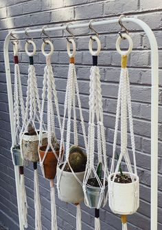 This handmade macrame rope plant hanger is available in multiple styles  to bring the outside in! Handmade in Denver Colorado, USA by a small  woman owned business. A plastic-free plant holder made from cotton rope  and a wooden ring. Zero waste shipping - a wonderful gift idea! Macrame  planter rope style hanger  #macrame #plasticfree #plasticfreehome Rope Plant Hanger, Macrame Plant Hangers, Wool Dryer Balls, Reduce Reuse Recycle, Free Plants, Organic Living, Eco Friendly House, Wooden Rings, Free Products