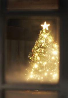 Un sapin hyper lumineux et de jolis chants de Noel. Rétrouvez les paroles de vos chansons de Noel préférées.