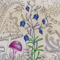 """Bluebells #bluebells  #enchantedforest #secretgarden #coloring #coloringbook #colouring #johannabasford"""