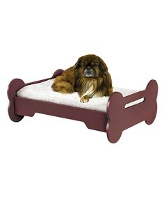 Take a look at this Bone Pet Bed by Etna Products on #zulily today!