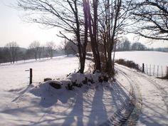 Entre balades nature, visites et rendez-vous culturels incontournables, il fait bon vivre en Creuse... même sous la neige !