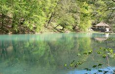 Feltöltődést ígérő, káprázatos vidékek, melyeket csak imádni lehet. Aquarium, River, Nature, Fun, Painting, Outdoor, Hungary, Travel, Goldfish Bowl