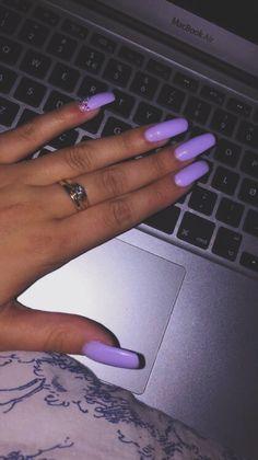 ✨ lavender ✨