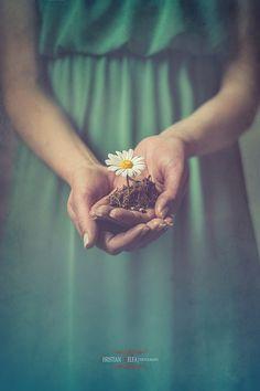 MOM!!! I Love daisies 2!!! She was magic!! //Brilliant Photography by Christian Melfa
