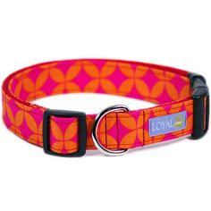 Tangy Dog Collar Adjustable or Martingale Style by CurlyTales, $24.00