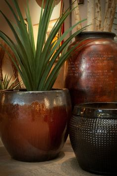CeTerra finds locally made ceramics, earthenware pots, glass vases and wooden natural elements that add a unique quality and texture for your home. Southwestern Decorating, Southwestern Style, Mexican Furniture, Desert Plants, Earthenware, Earthy, Accent Decor, Contemporary Design, Decor Styles