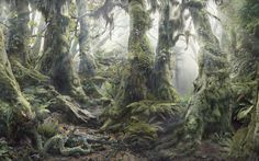 Hidden Picture in 3D | How many animals can you find hidden in this image – there are 14 in ...
