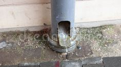 Video about Home downspout - rainwater flowing from the gutter. Video of gutter, rainwater, stream - 72890875 Stock Photos, Abstract, Home, Summary, Haus, Homes, Houses, At Home