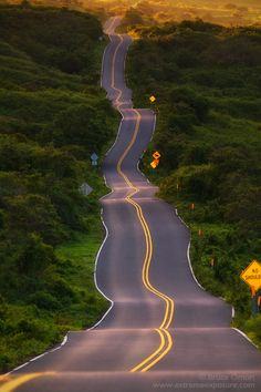 The Road To Hana in Maui. the 'drunk hwy.' since this is the ONLY straight stretch of road. Maui Hawaii, Hawaii Travel, Hawaii Usa, Hawaii Life, Arizona Travel, Maui Vacation, Vacation Deals, Travel Usa, Beautiful Roads