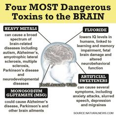 Four Most Dangerous Toxins to the Brain.