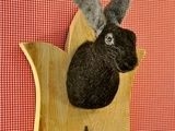 Skulpturen - StarkeBeest Wandkopf Stallhase handgefilzt - ein Designerstück von StarkeBeest bei DaWanda