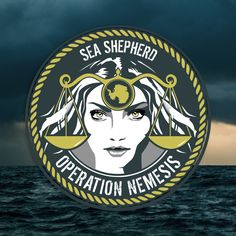This December Sea Shepherd will embark on its 11th Antarctic whale defense campaign. Once again, our ships will be all that stand between the whales and the Japanese whaling fleet.