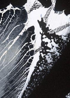 J.D. Doria Art | Organic Memory Series