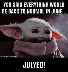 Really Funny, Funny Cute, The Funny, Hilarious, Yoda Funny, Yoda Meme, Stupid Funny Memes, Funny Relatable Memes, Funny Stuff