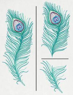 Peacock Quill (Split)_image
