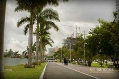 Cinta Costera, Ciudad de Panamá