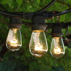 48 ft Black Commercial Medium String Light & 11S14 Clear Bulbs - not customizable length