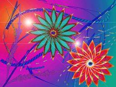 Vibrant Efflorescence