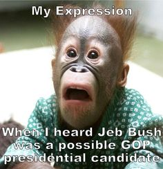 NO family in America should ever have three of its members in the Oval Office.  Give someone else a turn.  Jeb is a politically correct MORON.