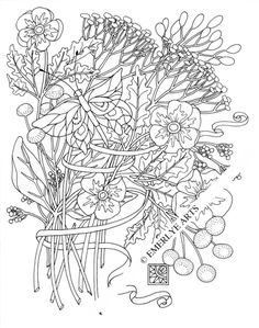 cynthia emerlye vermont artist and life coach queen anne butterfly an adult coloring