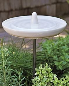 1000 images about the yard on pinterest mosquitoes On eva solo bird bath