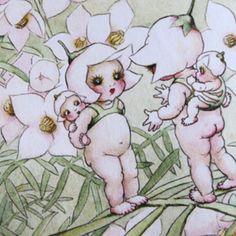 Gum nut babies Nursery Rhymes, Girl Nursery, Flannel Flower, Illustration Art, Vintage Illustrations, Australian Animals, Flower Fairies, Illustrators, Paper Art