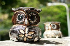 a couple owl