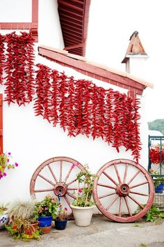Espelette, in the French Basque country. The prettiest of villages, its claim to fame is the chilli pepper, and these are everywhere! Aquitaine, Bay Of Biscay, Belle France, Santa Fe Style, Some Like It Hot, Biarritz, Land Of Enchantment, Basque Country, Jolie Photo