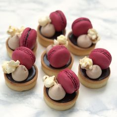 \ chocolate tartlets with macarons and popcorn #gargeran #chocolatetart #tart #chocolate #macarons #dessert #popcorn #yummy #sweet Macaron Vanille, Macaron Cake, Macarons, Chocolate Roulade, Chocolate Drizzle, Chocolate Crinkles, Lindt Chocolate, Chocolate Frosting, Chocolate Recipes