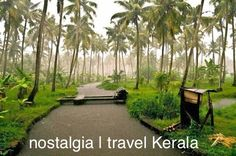 Travel Kerala   tourism packages   best monsoon packages   visit Kerala   travel and tourism in Kerala   best Kerala tour visit passiontourism.com