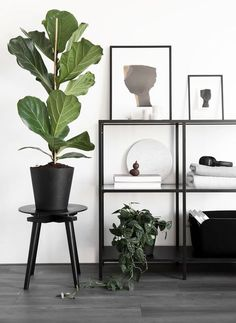 BEELDSTEIL.COM Wen van Woudenberg | beeldSTEIL portfolio - blog #blogupdate #portfolio #homedecor