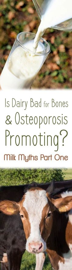I look at the research to answer the question, is dairy bad for bones and osteoporosis promoting? This is part one in a multi-part Milk Myth series with Registered Dietitian, Abbey Sharp.
