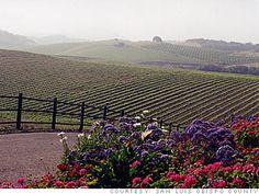San Luis Obisbo. 45 min North of Lompoc, California.   Google Image Result for http://i2.cdn.turner.com/money/galleries/2010/real_estate/1009/gallery.best_places_retire.moneymag/images/san_luis_obispo_ca2.jpg