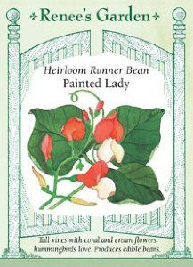 Runner Beans Heirloom Painted Lady Seeds 18 Seeds by Renee's Garden. $2.79. There are so many reasons to grow this annual vine. Don't start this indoors. Once it makes up its mind to grow, it doesn't like to move. Sow directly where you want it after the soil has warmed.