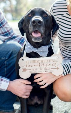 Personalized Save the Date Signs! Adorable idea for an engagement photo shoot & photography pose ideas with your dog. | Engraved Pet Sign by www.zcreatedesign.com