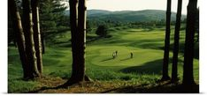 Poster Print entitled Four people playing golf, Country Club Of Vermont, Waterbury, Washington County, Vermont, None