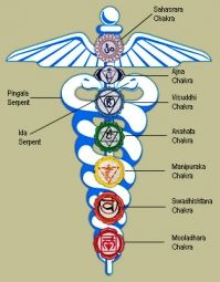 The History of Kundalini - Humans have always wanted to believe in magic,supernatural powers, life after death and a higher power. Kundalini is usually found within the mystical parts of our ancient civilizations, including Egypt and India. The earliest evidence of Kundalini dates back to before 3000 BC. Well known symbols such as the moon and the serpent can represent how we use Kundalini in our life.