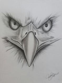 Realistic Pencil Drawings, Bff Drawings, Tattoo Design Drawings, Art Drawings Sketches Simple, Animal Sketches, Pencil Art Drawings, Colorful Drawings, Animal Drawings, Eagle Drawing