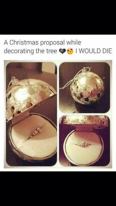 Probably the only winter proposal id accept because it doesn't involve being outside for a Minnesota winter.