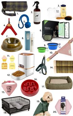 Animal Shopping: regali per cani e gatti | Vita su Marte Collage, Shopping, Mars, Collages, Collage Art, Colleges
