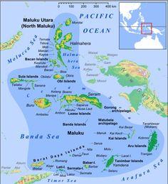 Ternate (Indonesia), perteneció al Imperio español de 1606 a 1663); Reino de Portugal.