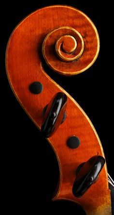 violin neck scroll... LOVE musical instruments for their designs ~!~