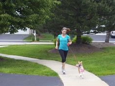 how to train your dog to run with you: maybe I can use these tips with a new puppy because Jack is hopeless.