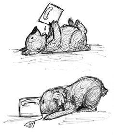 Les 95 Meilleures Images Du Tableau Koala Sur Pinterest Cute