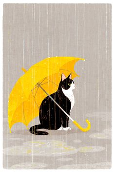 cat art, kitty cats, tuxedo cats, cat illustrations, cat yellow umbrella