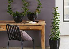 Hoya (voksblomst) Office Desk, Planters, Table, Furniture, Home Decor, Desk Office, Decoration Home, Desk, Room Decor