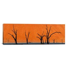 "East Urban Home Panoramic 'Dead Trees by Red Sand Dunes, Dead Vlei, Namib-Naukluft National Park, Namibia' Photographic Print on Canvas Size: 24"" H..."